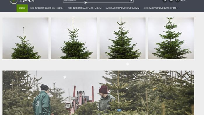 Web-Tipp: Der Christbaum-Onlineshop